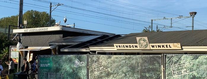 Vrienden Van Blijdorp Winkel is one of Diergaarde Blijdorp 🇳🇬.