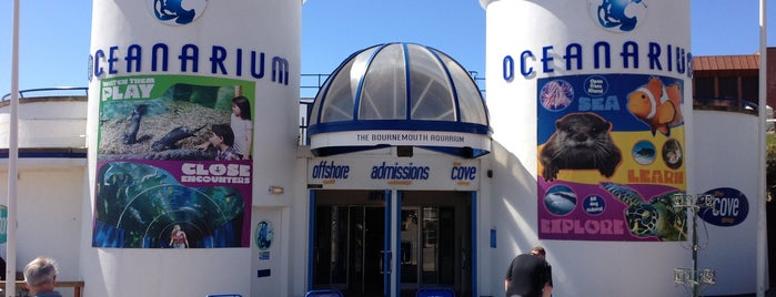Oceanarium, The Bournemouth Aquarium is one of Lugares favoritos de Karen.