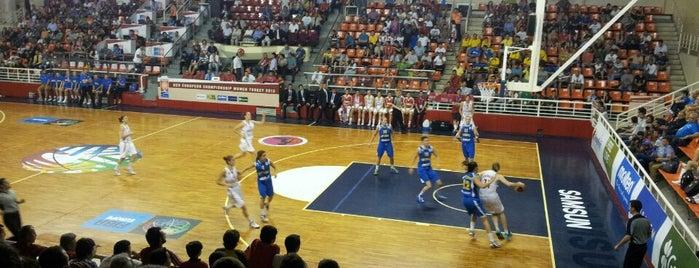 Yaşar Doğu Spor Salonu is one of Yunus'un Beğendiği Mekanlar.