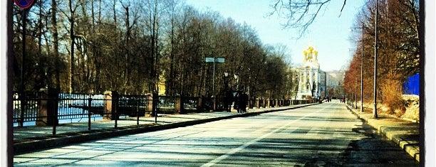 Пушкин is one of Анастасия : понравившиеся места.