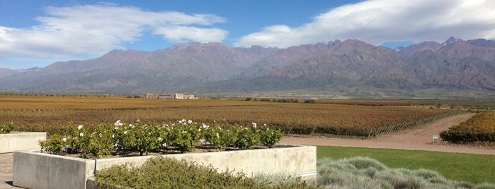 Bodega DiamAndes is one of Mendoza, Argentina.