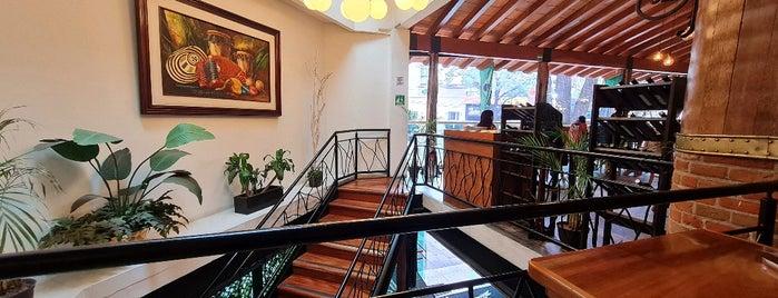 Rodizio CDMX is one of Restaurantes.