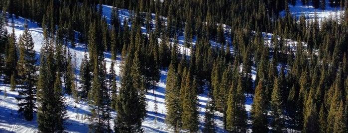 Gwyn's High Alpine is one of Lugares favoritos de Kyle.