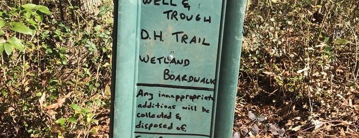 Doll's Head Trail is one of Lieux qui ont plu à Matt.