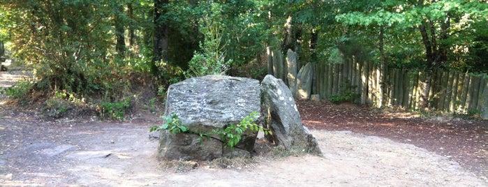 Forêt de Brocéliande is one of Bretagne.