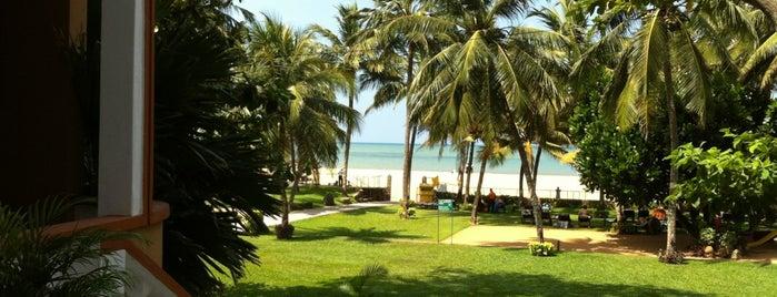 Camelot Beach Hotel is one of Lugares favoritos de Olesya.
