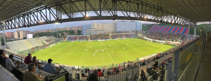 Stadio Ezio Scida is one of Part 1~International Sporting Venues....