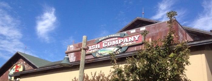 Islamorada Fish Company is one of Local.