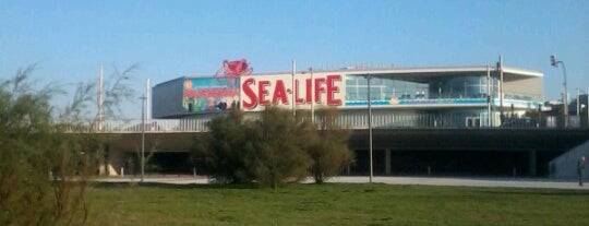 Sea Life Porto is one of Outros.