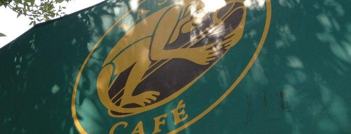 La Selva Café is one of Diego 님이 좋아한 장소.