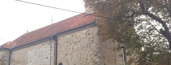 Manastir Rajinovac is one of Orte, die Dejan gefallen.
