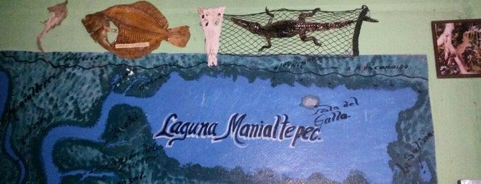 Lagunas Maniatepec is one of Puerto Escondido.