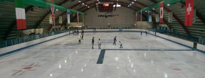 Lee Valley Ice Centre is one of 1000 Things To Do In London (pt 2).
