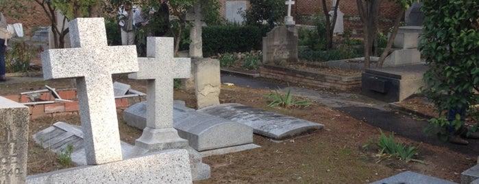 Cementerio Británico is one of 100 cosas que hacer en Madrid.