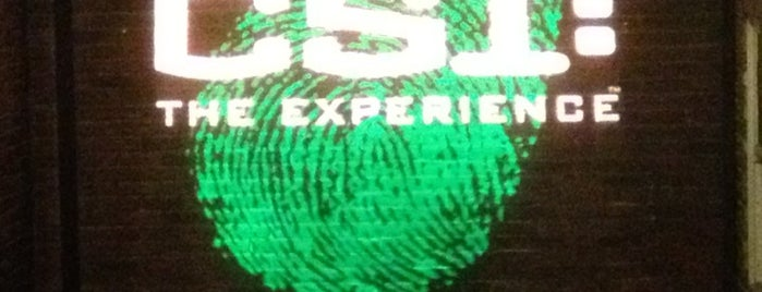 CSI: The Experience is one of prefeitura.
