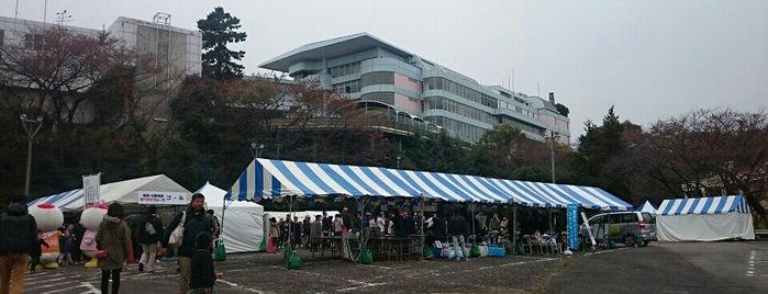 中華料理 克 is one of Lugares favoritos de Skotaro.