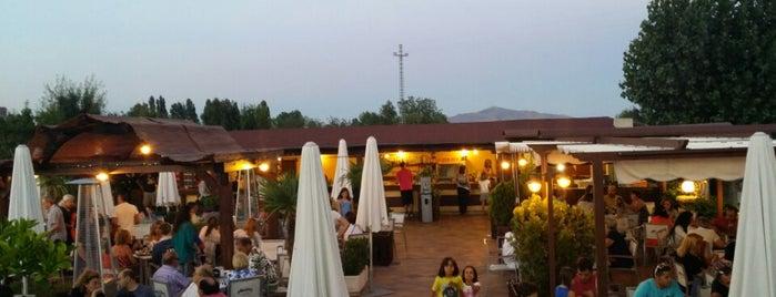 13@lounge is one of Lugares favoritos de Carolina.