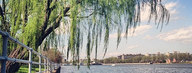 Hains Point is one of Bikabout Washington.