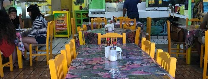 Planeta Vegetariano is one of Puerto Vallarta.