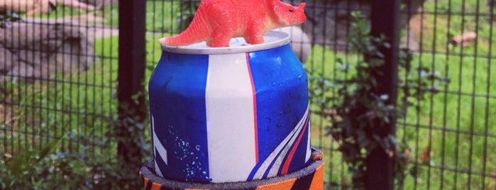 Zoo Brew is one of Lugares favoritos de Robbie.