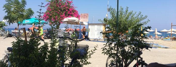The Quick Corner Beach Restaurant is one of สถานที่ที่ Haluk ถูกใจ.