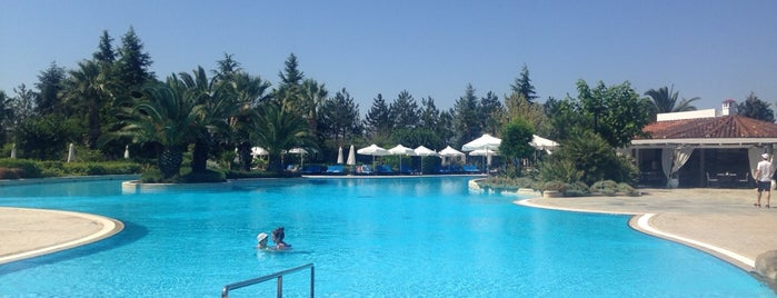 Hyatt Pool is one of Lugares favoritos de Sotiris T..