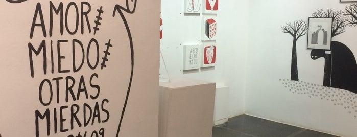 Artevistas Art Gallery is one of BCN.