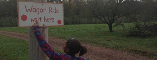 solebury orchards is one of Excellent Farms for Apple Picking.