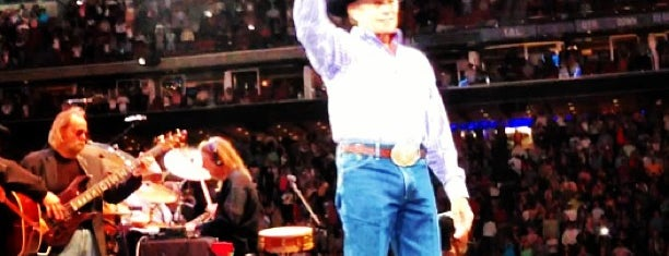 Houston Livestock Show and Rodeo is one of Houston Points Of Interest.