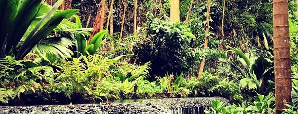 Singapore Botanic Gardens is one of Sing-a-pore.