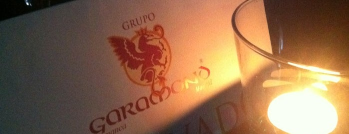 Garamond is one of Discotecas.