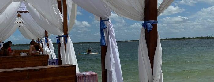 Alchymist Beach Club is one of Lieux qui ont plu à Karol.