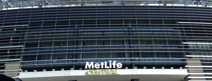 MetLife Stadium is one of Sporting/Concert....