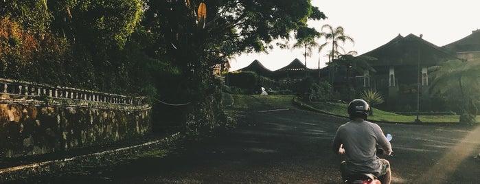 Bedugul is one of Enjoy Bali Ubud.