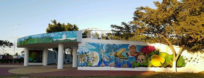 Parque Novia del Mar is one of Lugares favoritos de Luz Stivalis.
