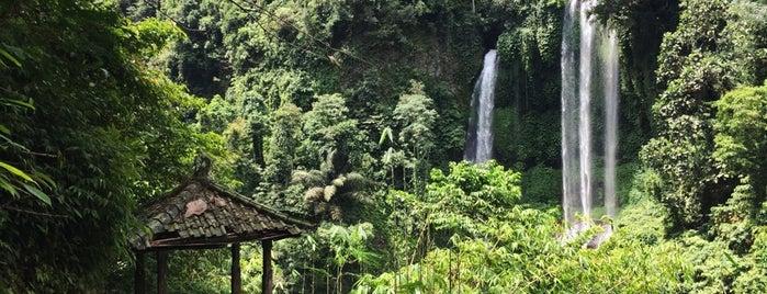 Sekumpul Waterfall is one of Indonesia 🇮🇩 Bali 🌸.