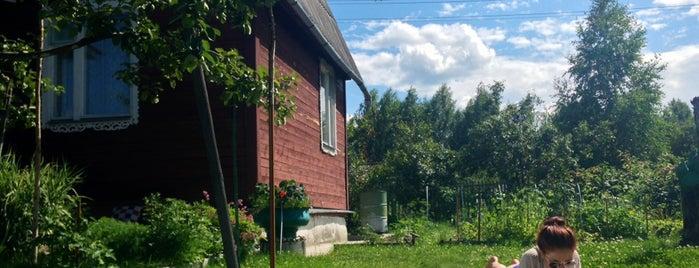 Happy land is one of Мои любимые квартиры.