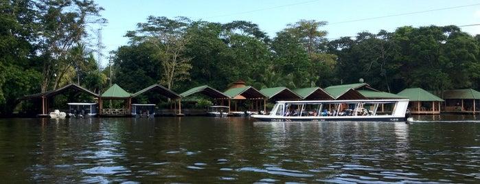 Laguna Lodge Tortuguero is one of สถานที่ที่ Miguel ถูกใจ.