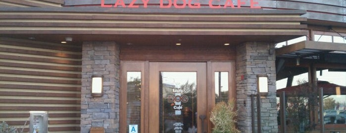 Lazy Dog Restaurant & Bar is one of Locais curtidos por Ryan.