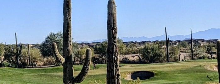 The Ritz Carlton Golf Club, Dove Mountain is one of Heidi : понравившиеся места.