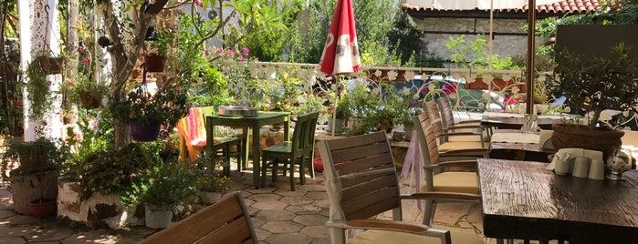 Lemon Tree Restaurant is one of antalya~ alanya~ side~belek.