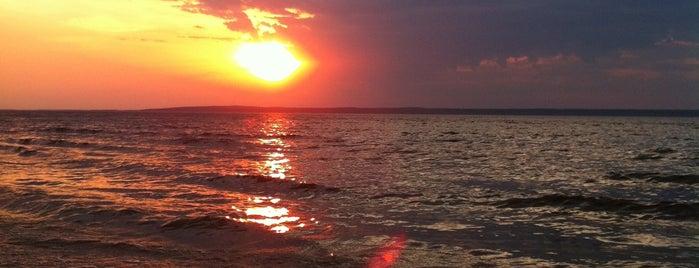 Центральный пляж is one of Alexander : понравившиеся места.