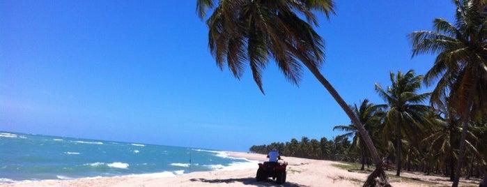Praias Maceió