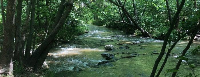 Sadağı Kanyonu Tabiat Parkı is one of Yurdun 4-1 köşesi.