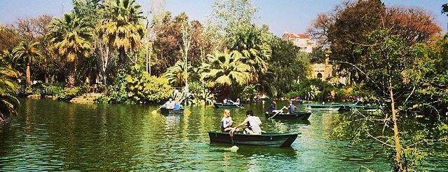 Barcelona's Top 5 Picnic Spots