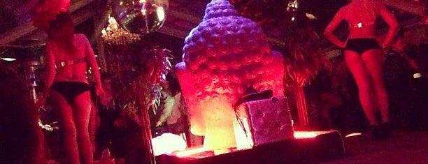 Blue Buddha is one of Tim's Favorite Restaurants & Bars around The Globe.