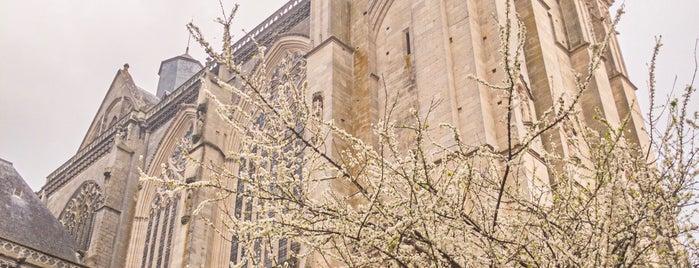 Cathédrale Saint-Julien is one of 100 km 2020.