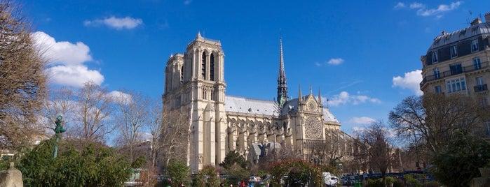 Square René Viviani is one of Paris ♡..