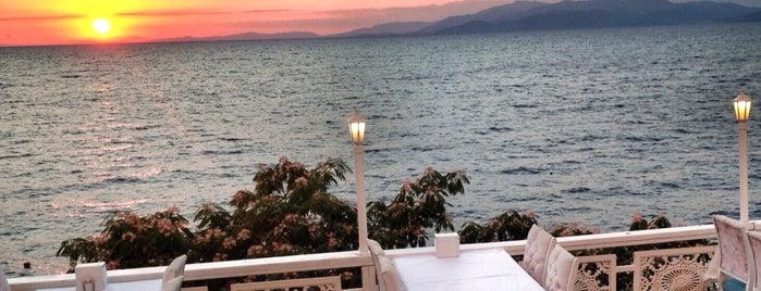 Tarihi Çınar Balık Restaurant is one of Hasanさんのお気に入りスポット.