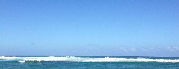 Villa Montana Beach Resort Isabela is one of Locais curtidos por Nikunj.